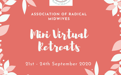 ARM Mini Virtual Retreats
